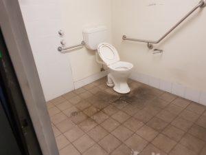 The Toilets that got forgotten 5