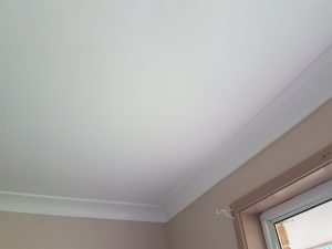 Does Redgum remove mould, Yes we do 30