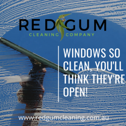Windows So Clean, You'll Think They're Open 1